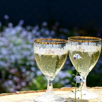 champagne-456655_1280.jpg