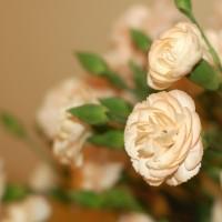 flowers-15928