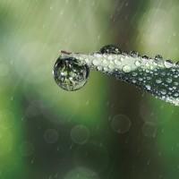 raindrop-642955_1280